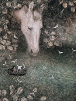 Hedgehog in the water and Horse