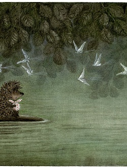 Hedgehog on Fish and Butterflies