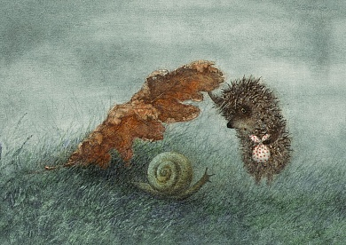 Hedgehog with leaves and snail